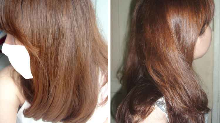 warna rambut favorit loreal