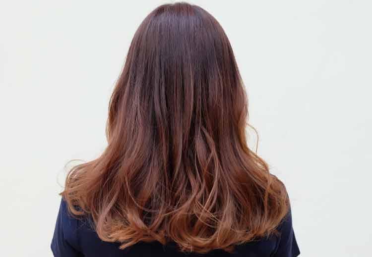 warna rambut highlight untuk kulit sawo matang
